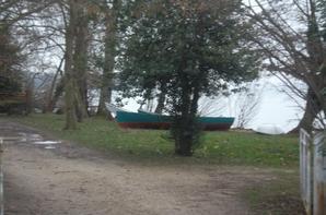 encore un belle promenade aujourd'ui  en longeant les bords du lac Léman    !!!