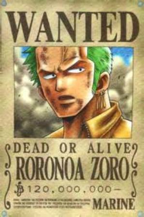 Zoro de One piece!