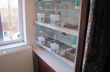 Mes cages pour mon élevage