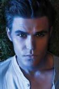 Vampires Diaries avec Stephen , Damon et Elena
