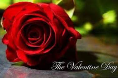 Bonne St Valentin