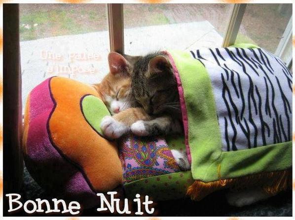 BONNE NUIT ET BON DIMANCHE...LE TOUT DERNIER DE L'ANNEE 2012 !!! BISOUSS... !!!!