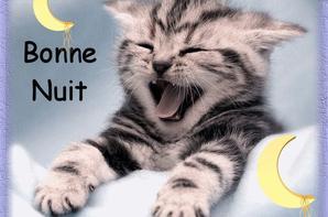 BONNE NUIT ET BON WEEK END.... BISOUS A MES AMI(E)s.... !!!