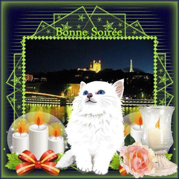 BONNE SOIREE ET DOUCE NUIT A VOUS TOUS ET TOUTES.....BISOUSSS.... !!!