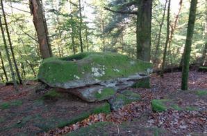 Le mont de Wotan (wuestenberg)
