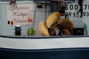 """Dans le trafic de cette fin de semaine sur la Haute-Meuse, la péniches-hôtel """"ANNA MARIA IV"""" (Amsterdam) à destination de Paris (Canal du Nord fermé!)  et L'OMBRAGE (Moerdijk) avec 240t. d'orge en provenance de Rethel et à destination de Roermond ..."""