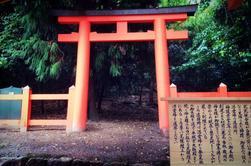 PHOTOS Nara