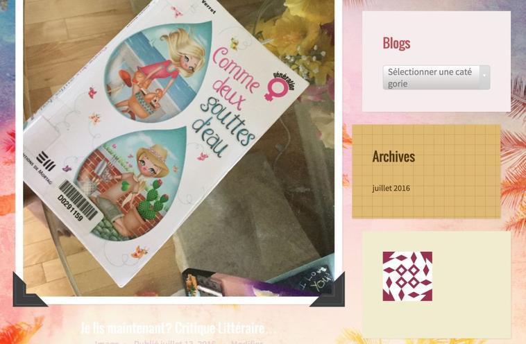 Blogueuse pour les meufs