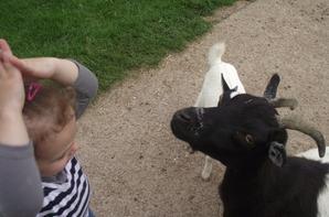 zoo avec ma fille