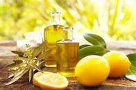 Citron vert bio trésor pour la santé. Protégez votre corps des piqûres de moustique.