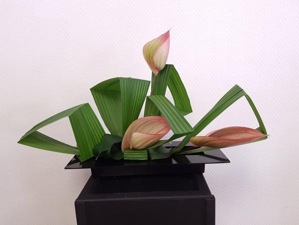 """Stage Art Floral à l'atelier """"A Fleur d'Eau"""""""