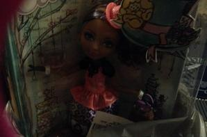 Cedar Wood hat-tastic ever after high