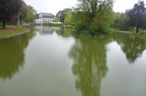 Voici l'étang du parc de Jemappes
