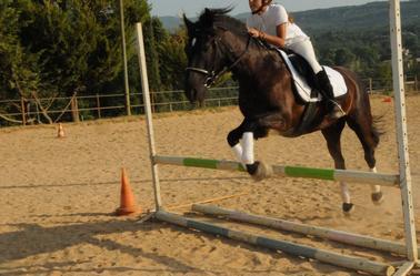 Donnez un cheval a celui qui dit la verite,il en aura besoin pour s'enfuir...