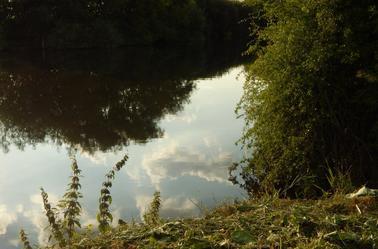 Lac de Allerton Bywater/ Allerton Bywater's Lake