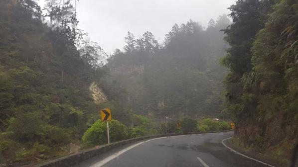 # Road Waihi beach