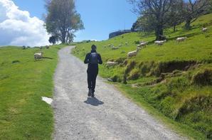 # Tauranga - Mount Maunganui