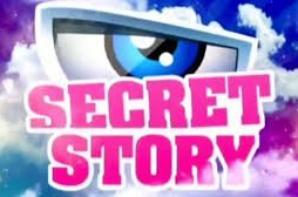 SECRET STORY PRIME TOUT LES MERCREDI PAR SEMAINES (CASTING OUVERT )