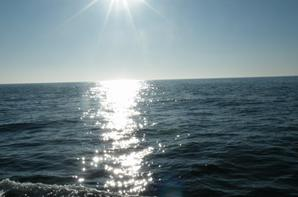 L'océan de la vie