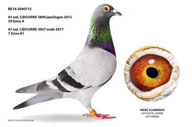 Vente Francolomb.com ( Union de Fourmies )N° 30 : Marc SLABBINCK BELGIQUE