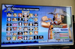 One Piece:Pirate Warriors 2