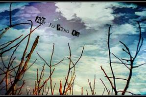 Art-Jo-Photo-63