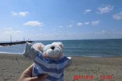 The other day, I went to the seas of the three countries of Fukui,