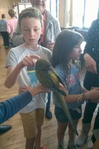 exposition d'oiseaux a dineault