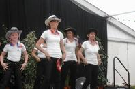 prestation du 07/08/16 pour le comité du Moulin Blanc