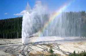 Le Parc Yellowstone