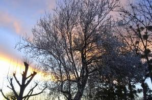 coucher de soleil à varades