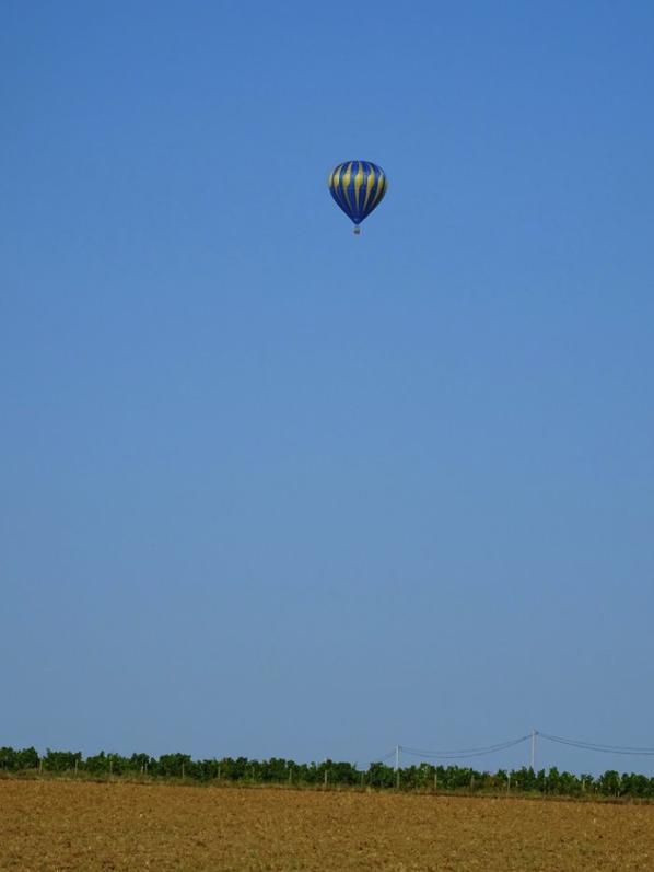 une petite visite au dessus de la maison en passant ce matin lol