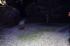 petit manteau neigeux ce soir