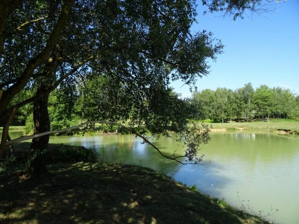 étang de la  barbotine au fuilet dans le 49
