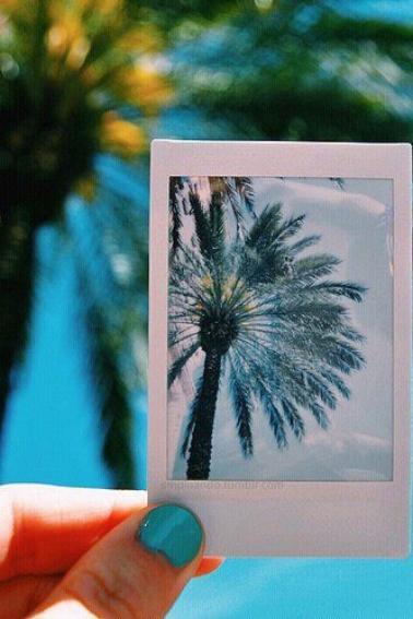 ☼ Four ☼