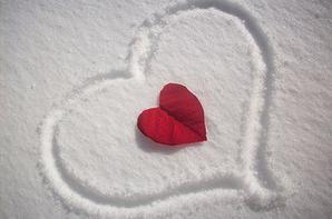 <3 Je t'aime <3