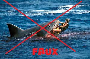 #SummerTime:1 #Dangers Des Plages : 1 #Grand Requin Blanc