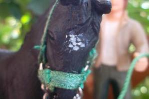 Je vous présentes Jappeloup Champion de Luze, le custom du poulain appaloosa Papo