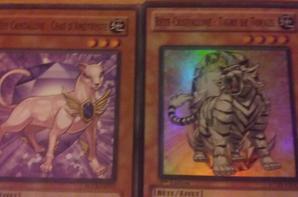 les bêtes de cristallines et le dragon arc en ciel