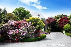 jardins botânicos.
