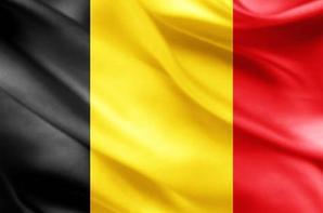 Grippe aviaire en Belgique