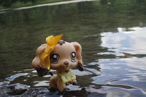 Vacances en Bretagne 2012 EP#1 Le tour du Lac à Tremelin pt.2