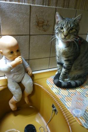 Et ouiiii quel boulot deja le matin tôt ....moi aussi j'me lave ma papatte mes oreilles je regarde méme si maman nous a bien lavee les pieds. Et oui ! et, voila bon boulot et personne rouspette bon dimanche