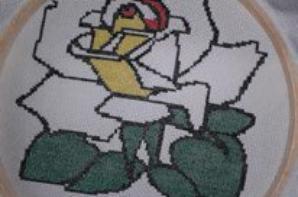 ma rose !!!