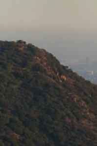 Los Angeles !