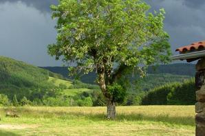 L'Auvergne c'est laid ? Voici la Haute-Loire, un des 4 départements.