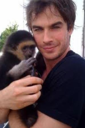 Ian Somerhalder prend la défense des animaux contre Air France !
