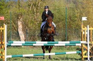 ♥Etre aimé par un cheval ou par un autre animal doit nous remplir d'humilité et de reconnaissance, car nous ne le méritons pas. ♥Laurent du Vivier