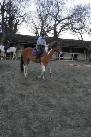 Entrainement Pony Games le 1er février à Chis