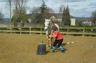Sous le 1er rayon de soleil de la semaine : Rencontre amicale de Pony Games à Nay !